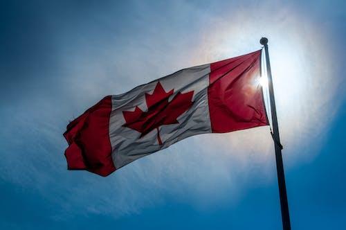 加拿大, 加拿大国旗 的 免费素材照片
