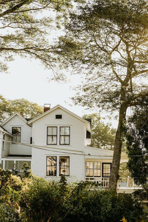 Immagine gratuita di albero, architettura, casa
