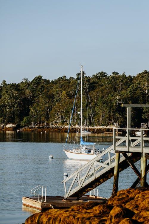 Immagine gratuita di acqua, barca, divertimento