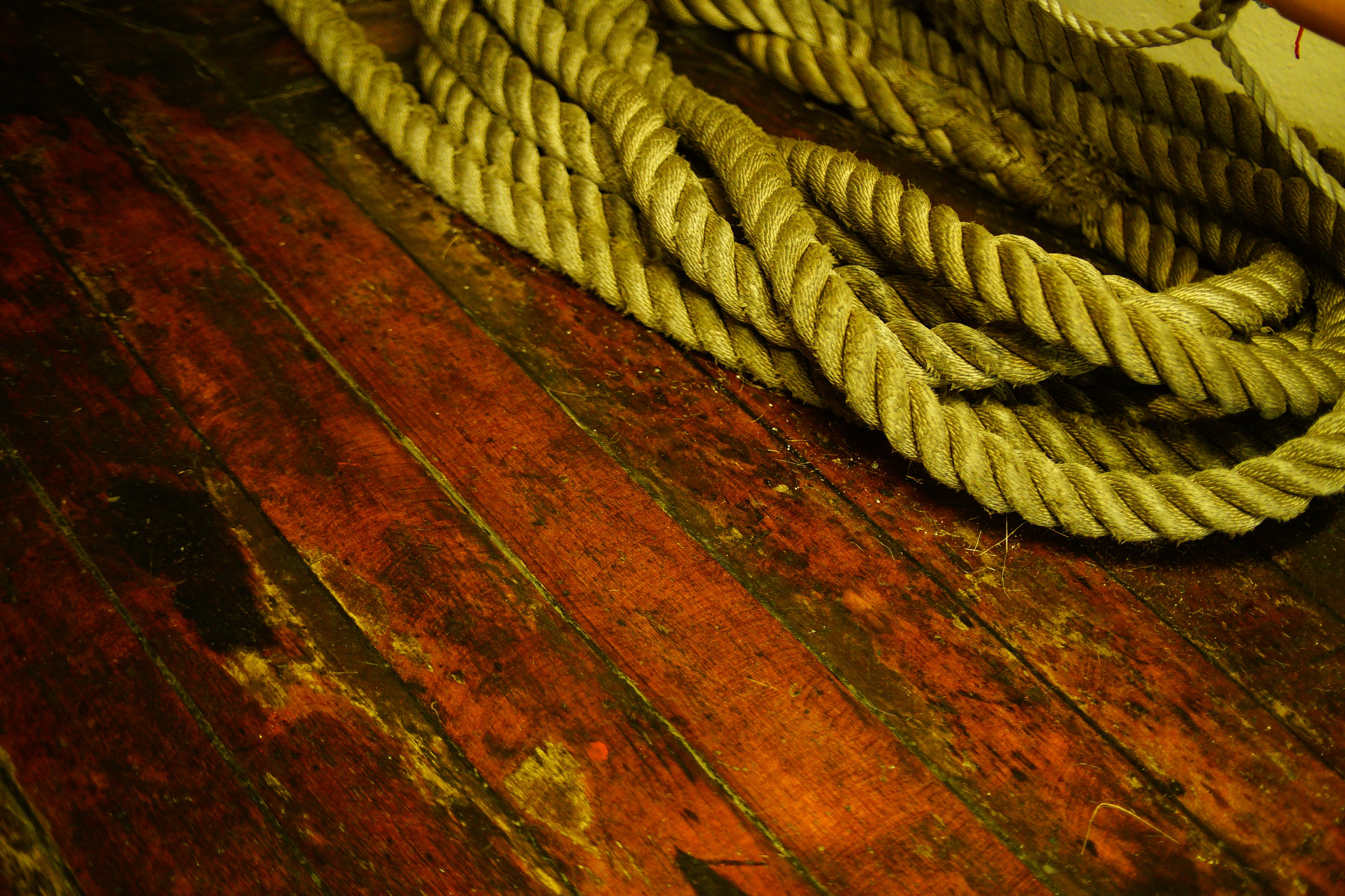 Free stock photo of boat, contrast, floor, rope