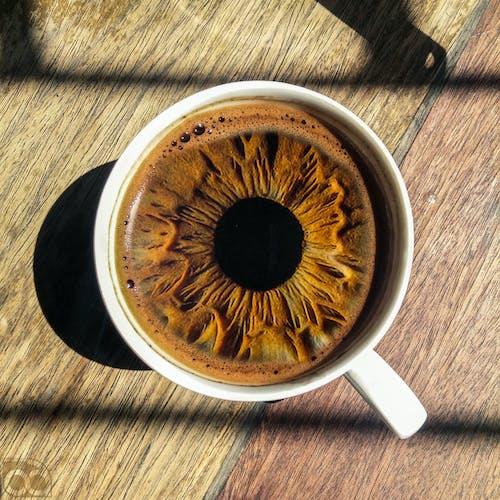 Gratis stockfoto met brownies, bruin, eenvoudig, humeur