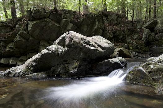 Water Running Through Rocky Terrain in the Woods