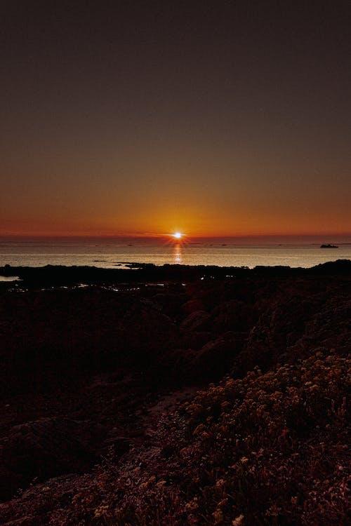 Free stock photo of backlit, beach, dawn
