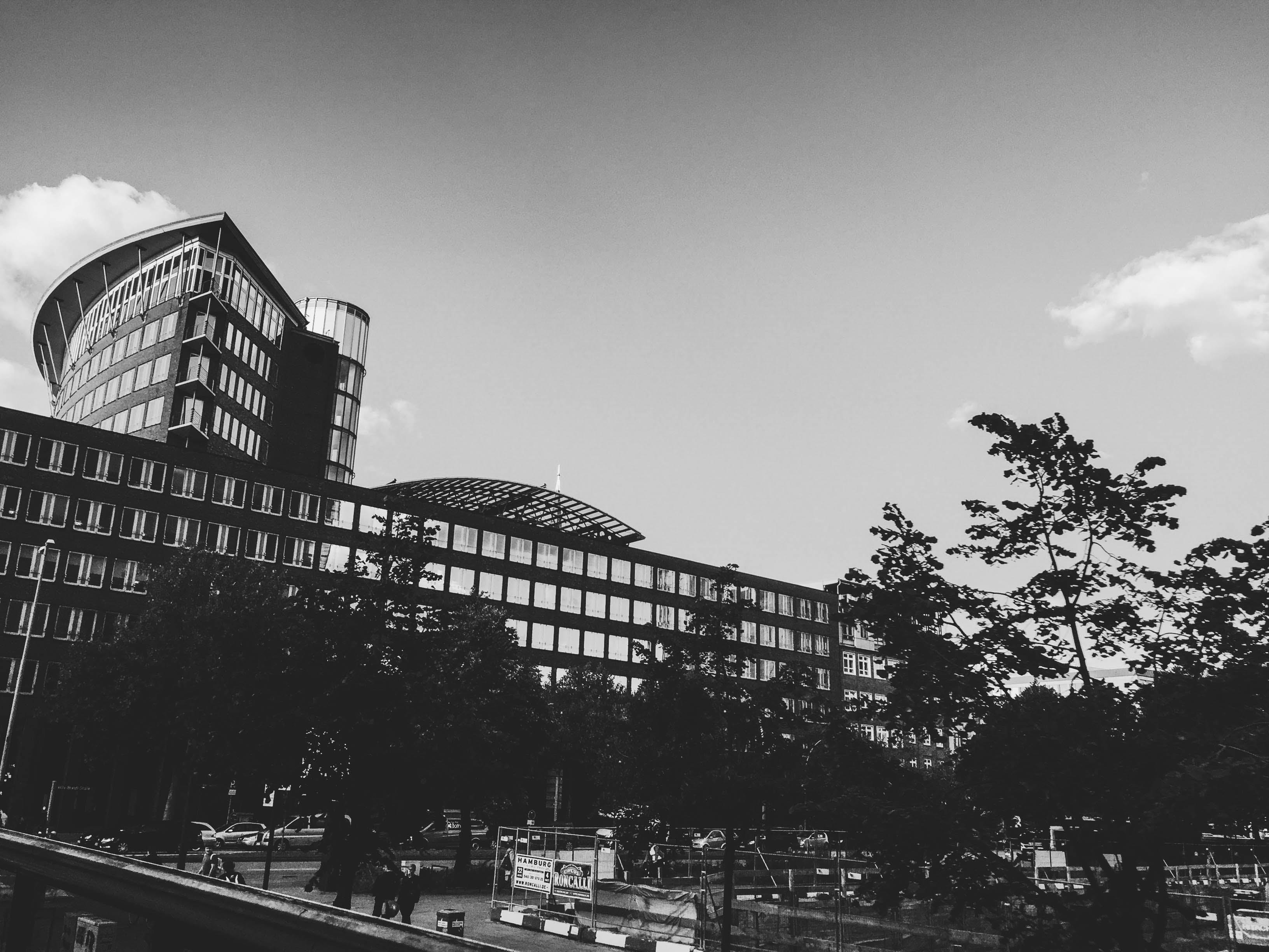 Foto profissional grátis de administração, aparência, arquitetura, árvores