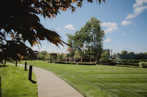 Gratis lagerfoto af amerikansk-flag, efterårsfarver, sky