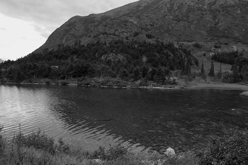 Free stock photo of alpine, lake, landscape
