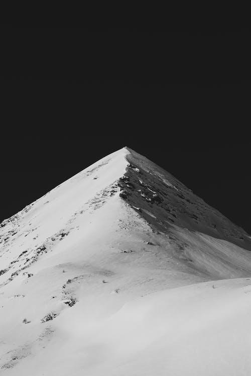 คลังภาพถ่ายฟรี ของ กลางแจ้ง, ขาว, ขาวดำ