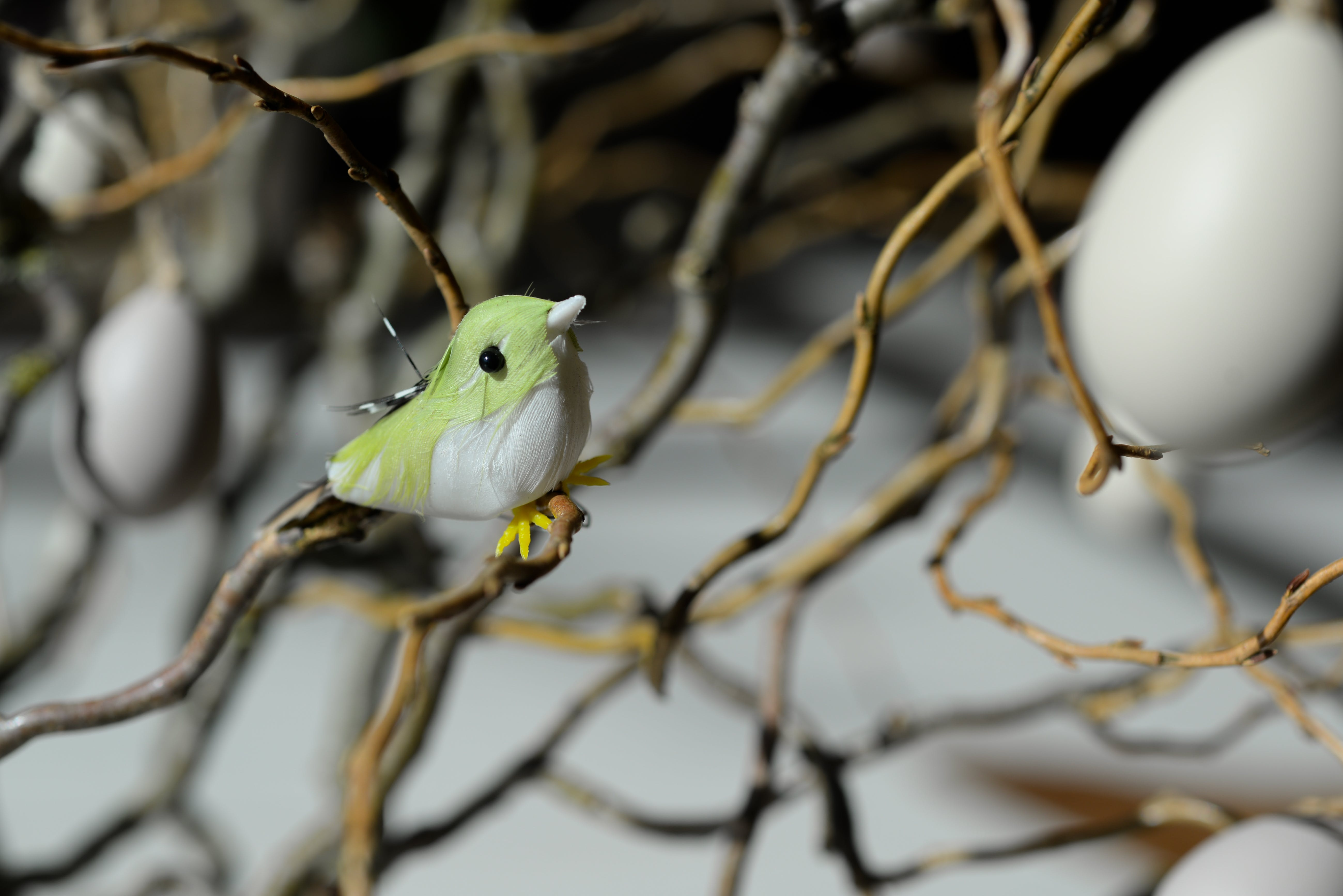 Green and White Bird Toy Perched on Tree Branch at Daytime