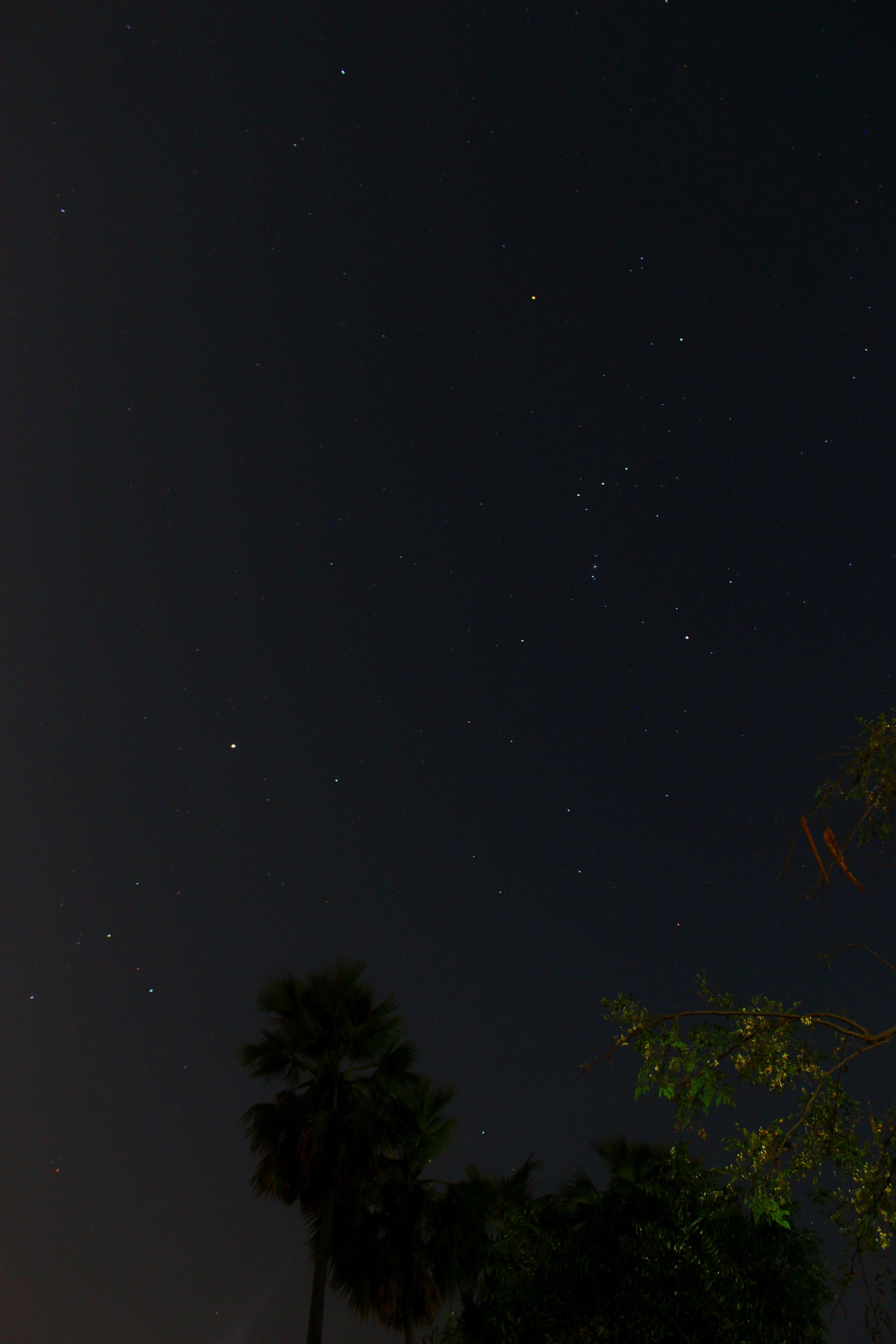 Free stock photo of stars