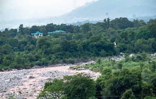 Free stock photo of flood, hills, monsoon