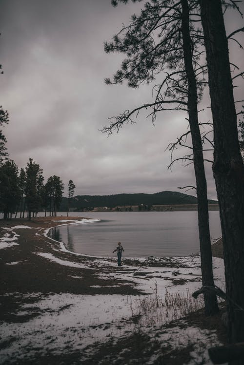 Безкоштовне стокове фото на тему «випадкові люди, вода, дерево»