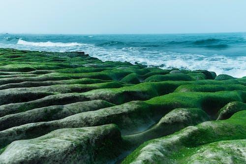 Ingyenes stockfotó hullám, óceán, rock, zöld zátony témában