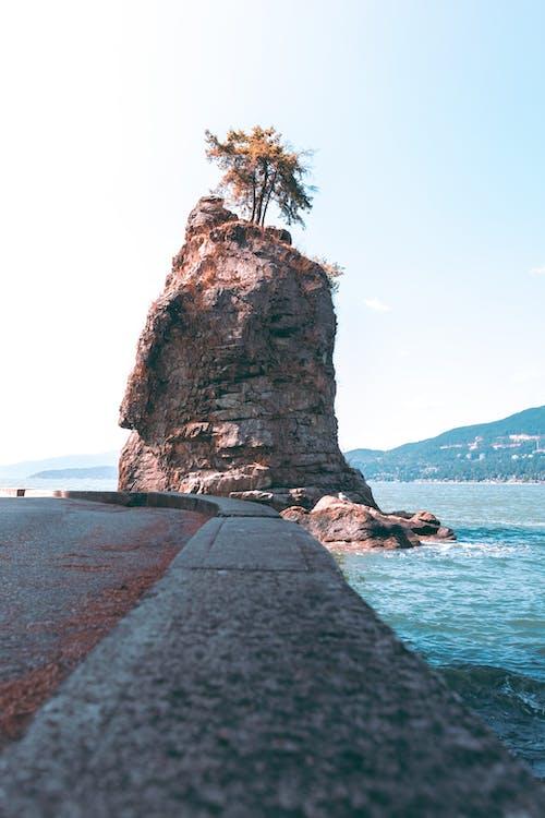 Základová fotografie zdarma na téma cestování, cyklostezka, dovolená
