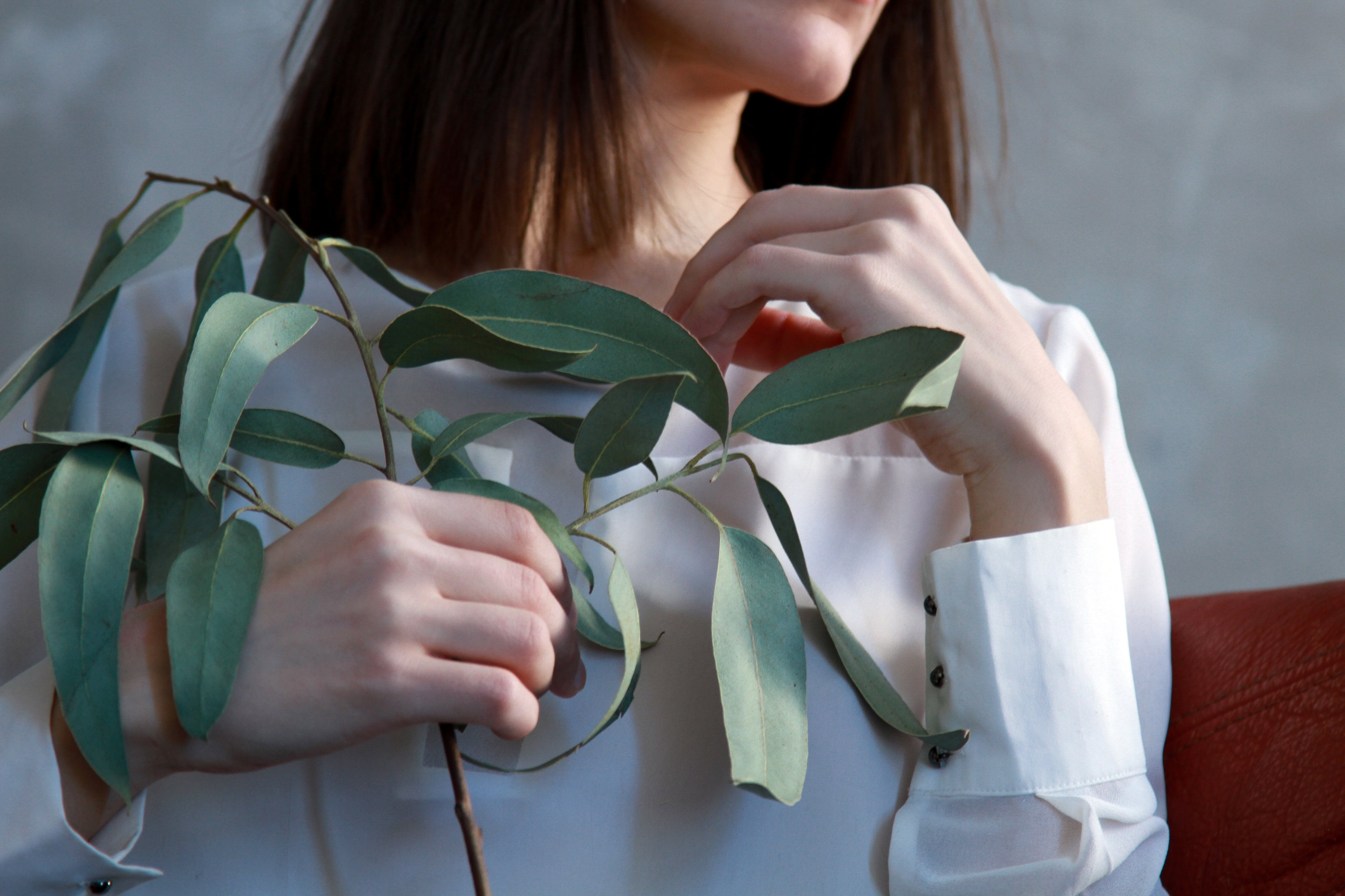 Woman Holding Green Leaf Plant