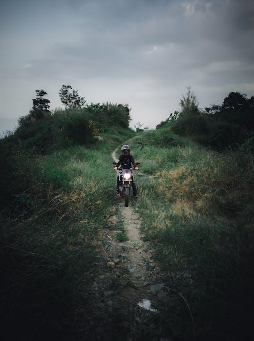 Foto profissional grátis de andar a cavalo, anônimo, céu