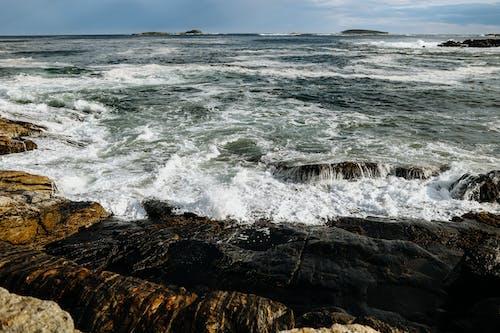 Immagine gratuita di acqua, alba, bagnasciuga