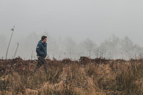 Darmowe zdjęcie z galerii z drzewa, krajobraz, malowniczy, mężczyzna