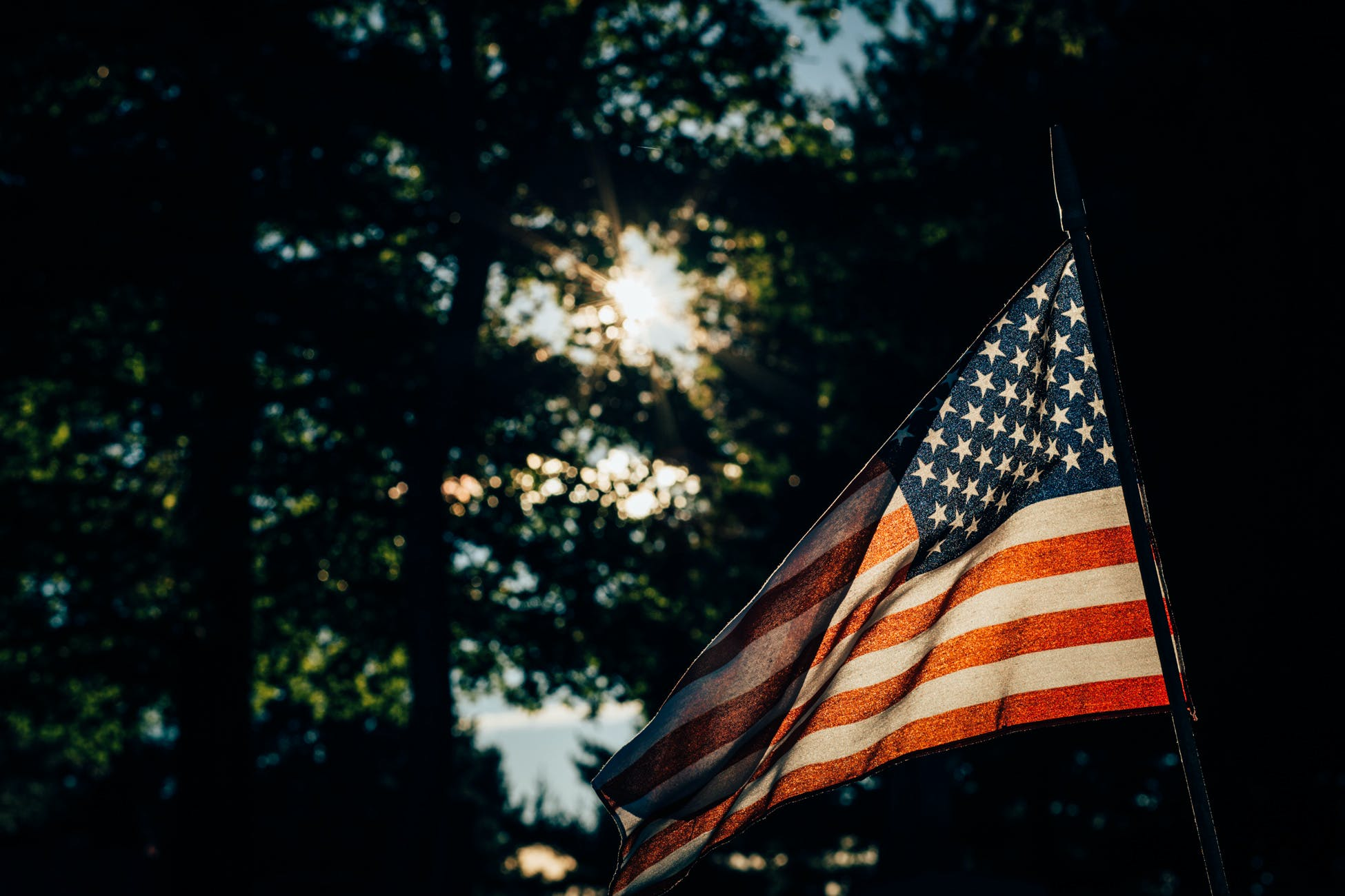 Free stock photo of sky, trees, flag, america