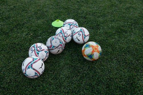 Immagine gratuita di allenatore, calcio, campo