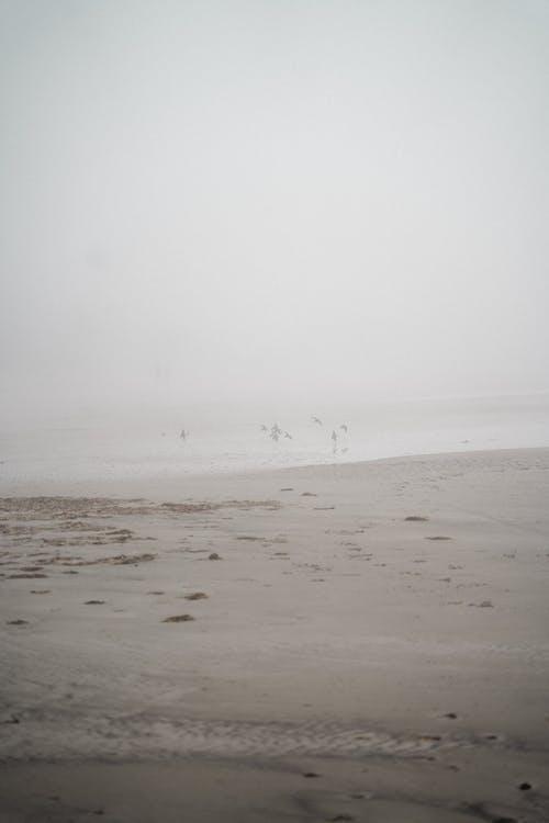 Darmowe zdjęcie z galerii z krajobraz, mgła, mglisty