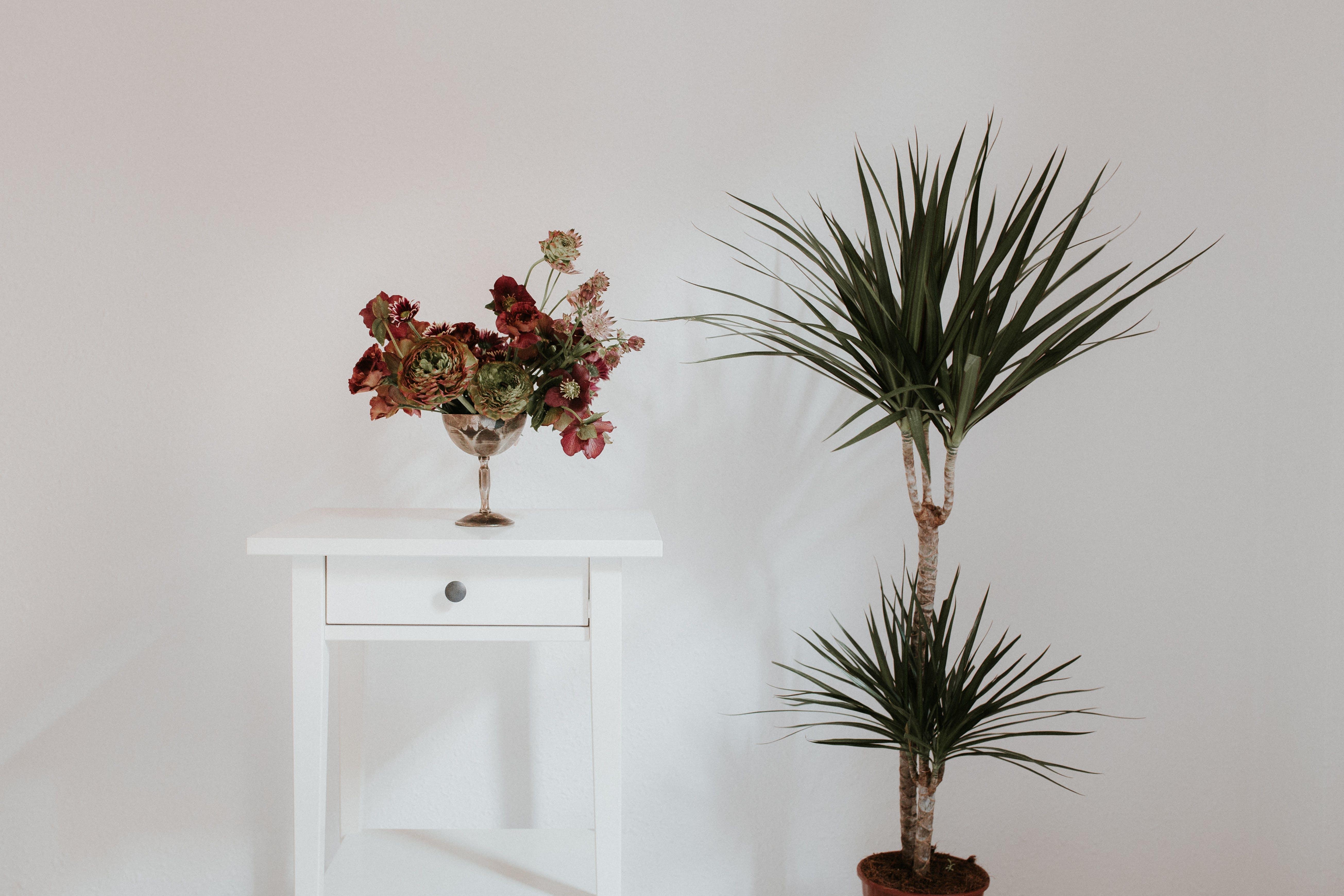 Free stock photo of houseplants, lighthouse, minimal, minimalism
