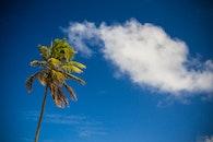 sky, beach, holiday