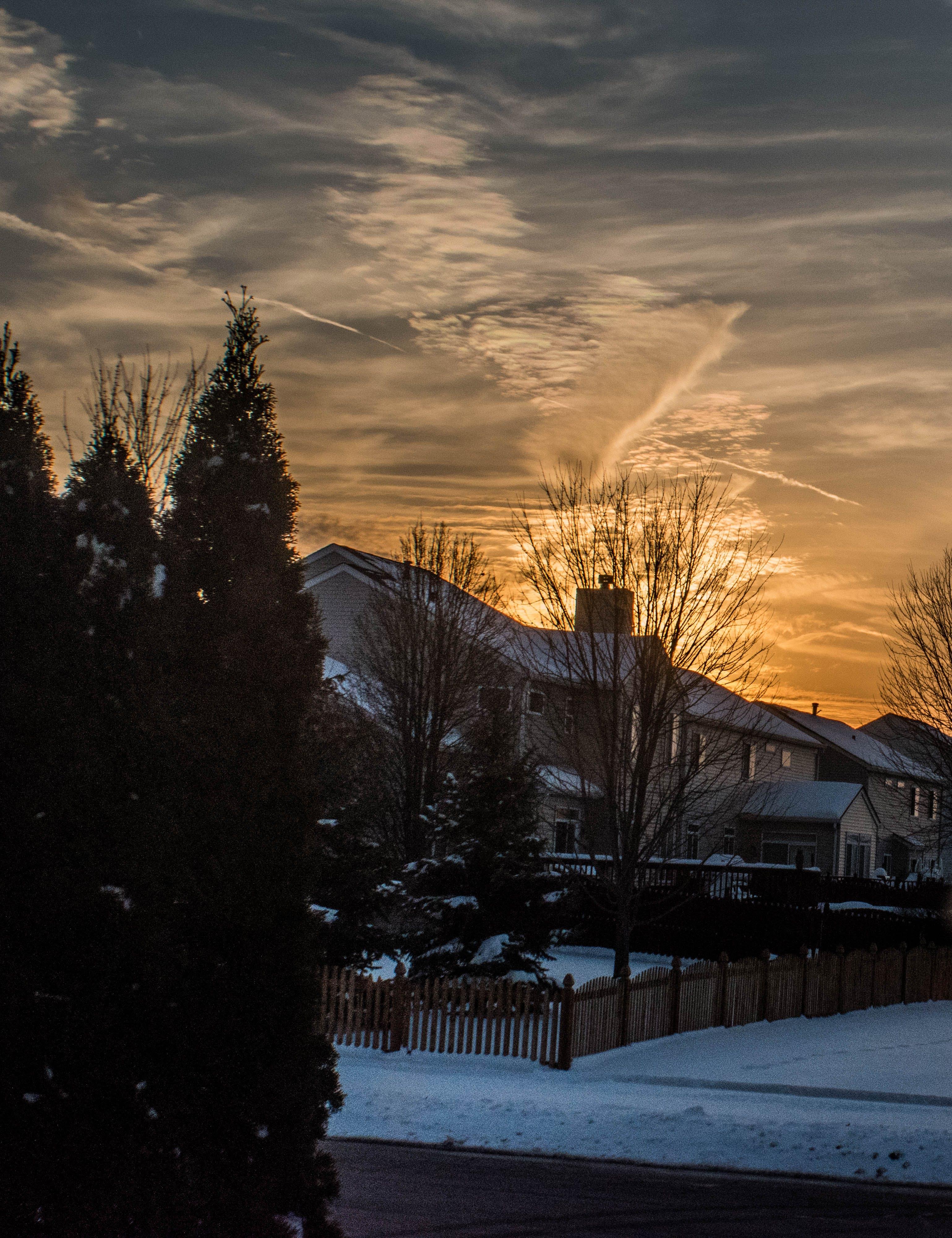 Free stock photo of golden sunset, sunset, winter landscape, winter sunset