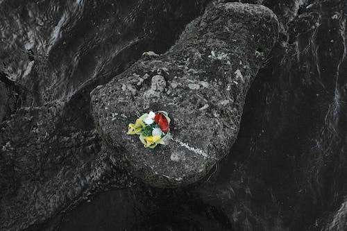 Безкоштовне стокове фото на тему «Балі, баланс, мистецтво, морська вода»