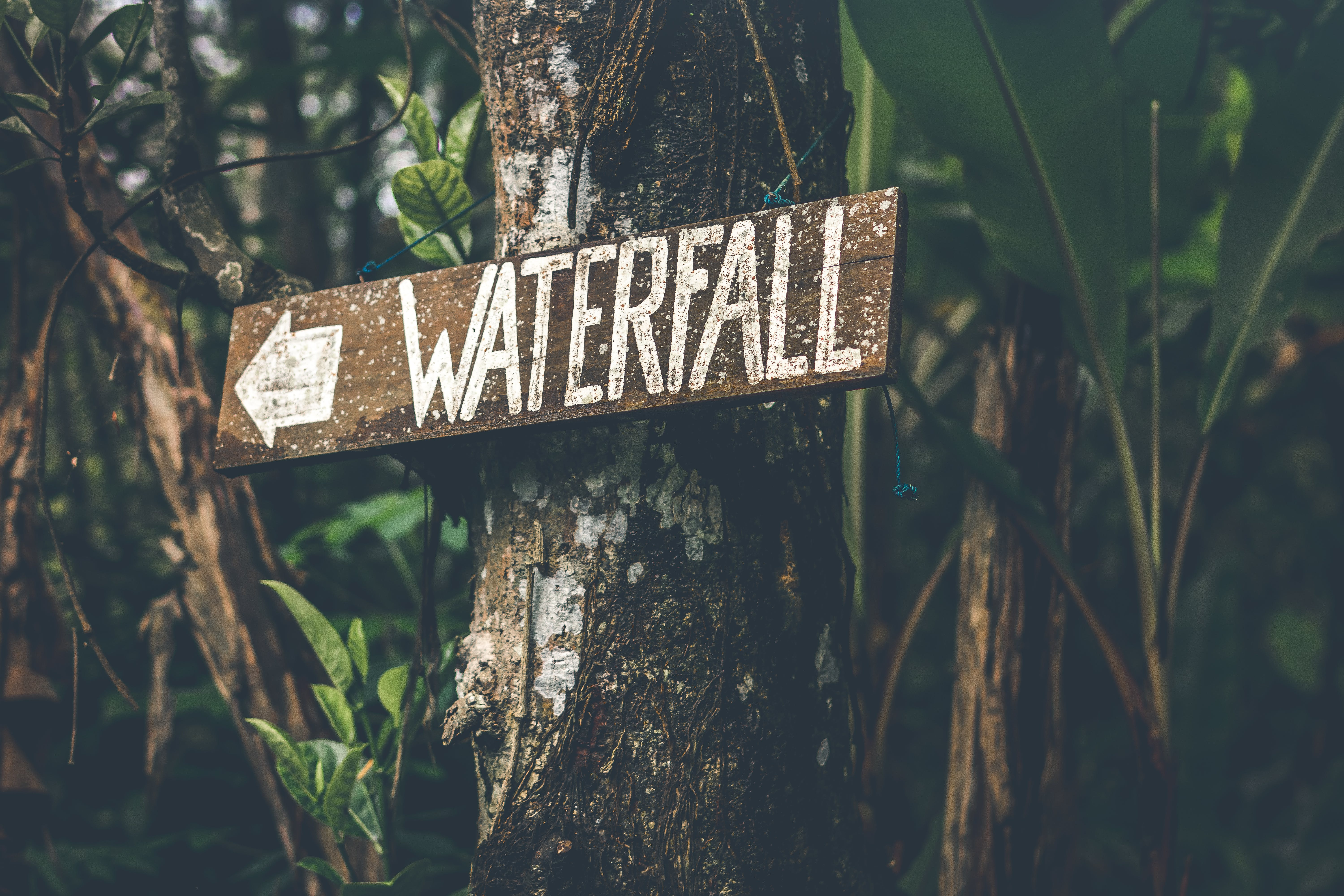 Brown Wooden Waterfall Direction Sign Placed on Brown Tree Bark