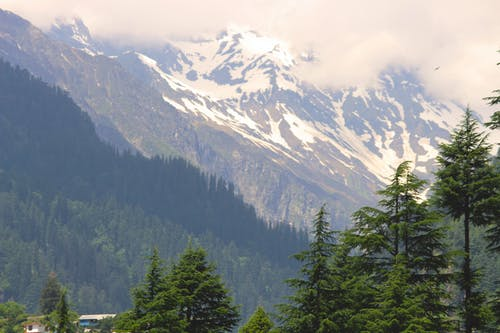 คลังภาพถ่ายฟรี ของ การเดินทางบนถนน, พักร้อน, ภูเขาสีน้ำเงิน, วันหยุด