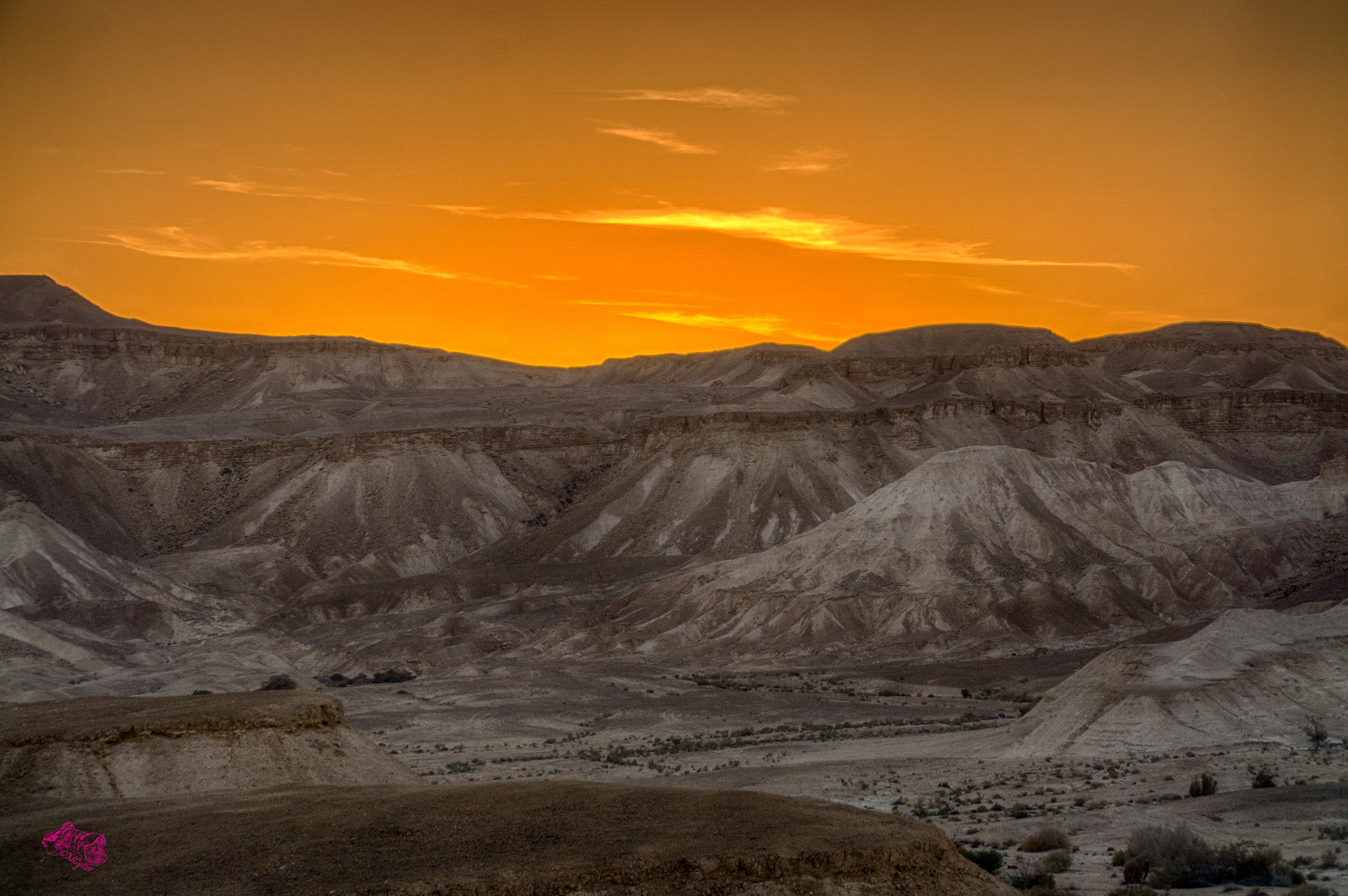 Free stock photo of desert, goldenhour
