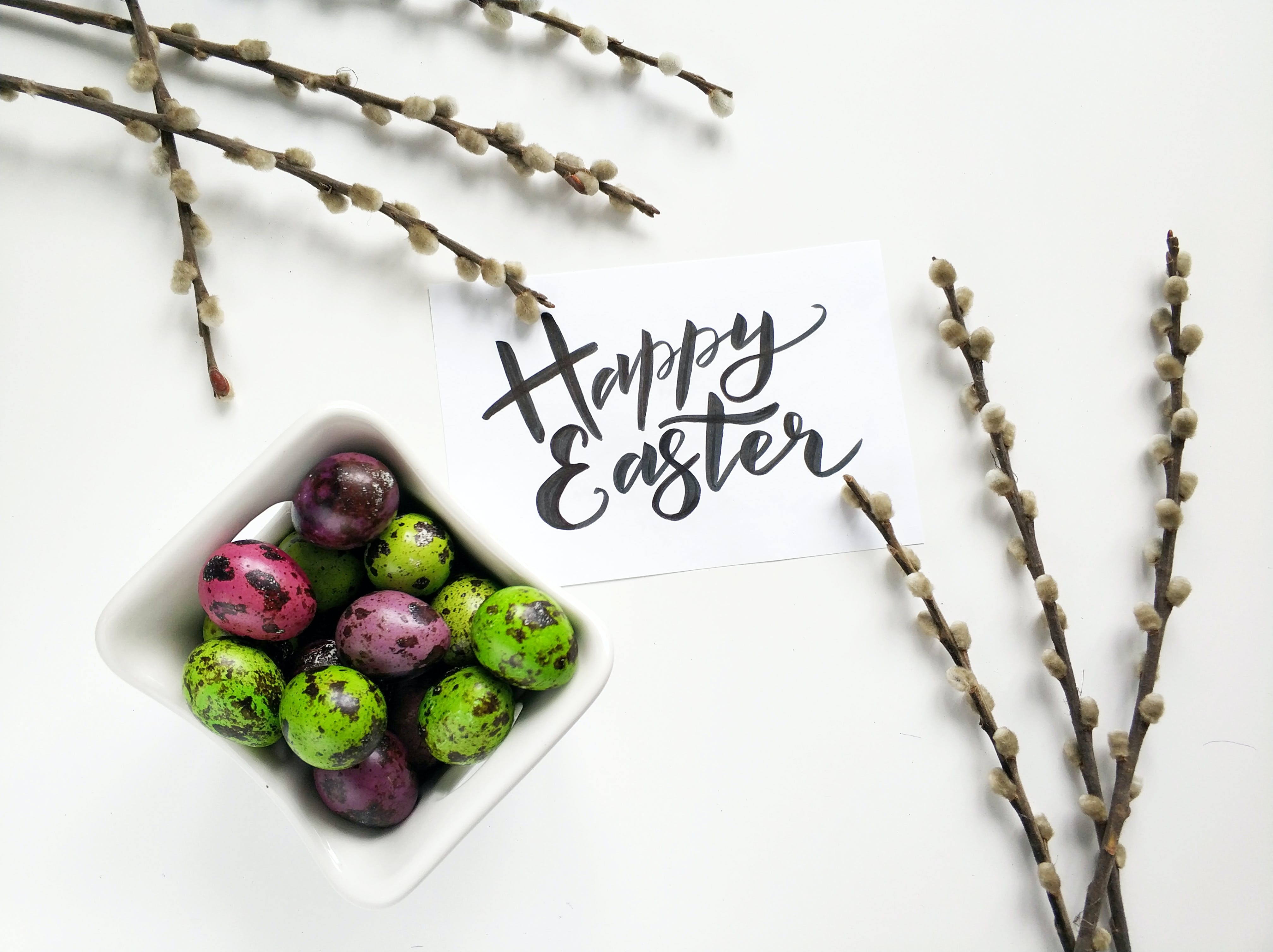Free stock photo of art, beautiful, boiled eggs, branch