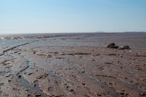 썰물의 무료 스톡 사진