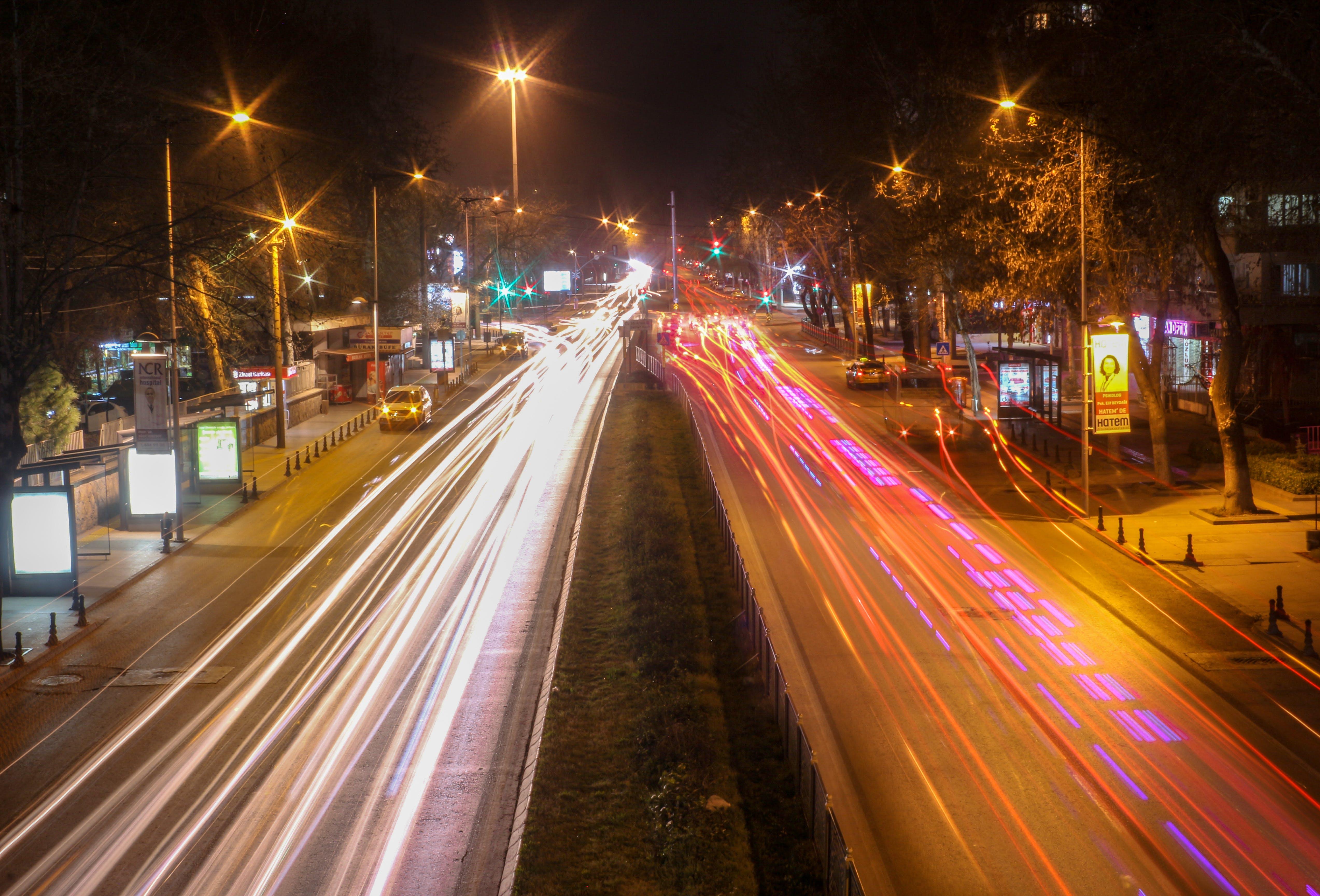 Free stock photo of cars, street, animal photography, back light