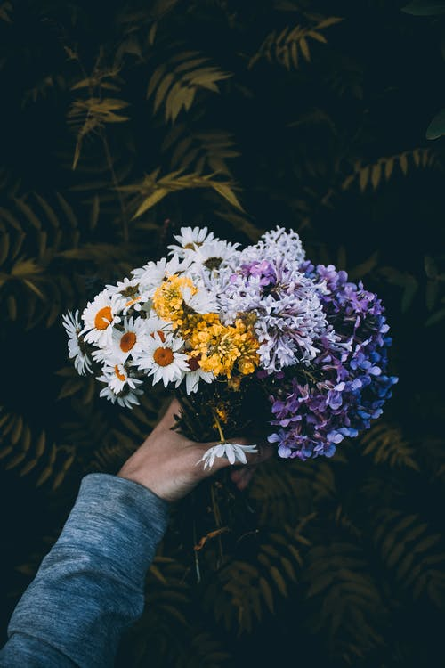 Photo of a Person's Hand Holding a Bunch of Flowers
