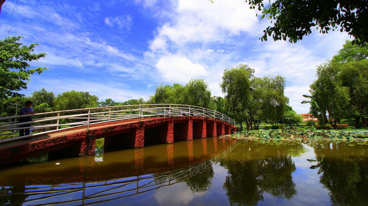 Free stock photo of bridge, water tank