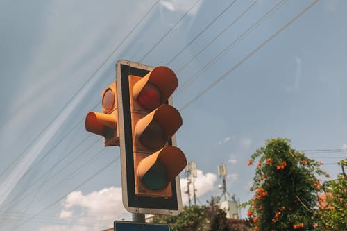 Foto stok gratis berhenti bergerak, buah, cahaya