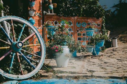 Foto stok gratis air, antik, Arsitektur