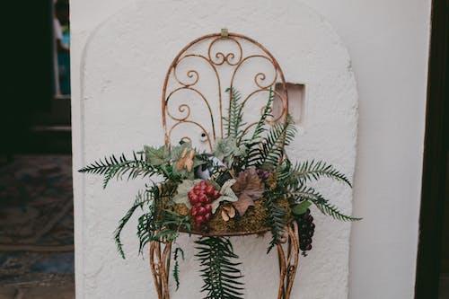 Foto stok gratis Arsitektur, bunga, daun