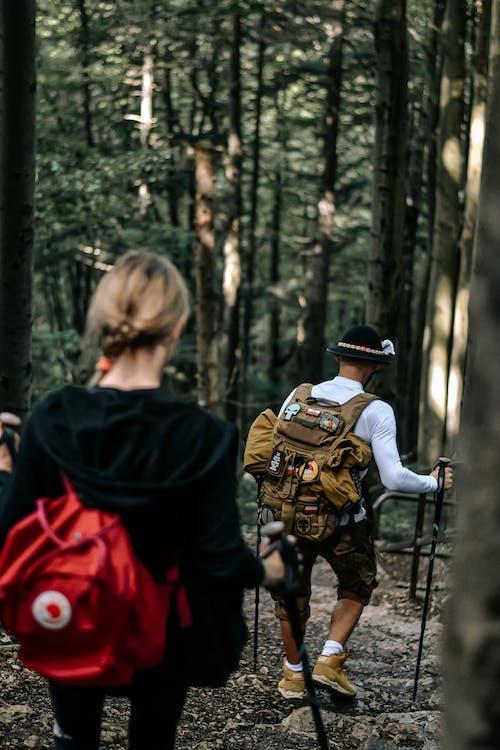Δωρεάν στοκ φωτογραφιών με highlander, άνδρας, βήμα