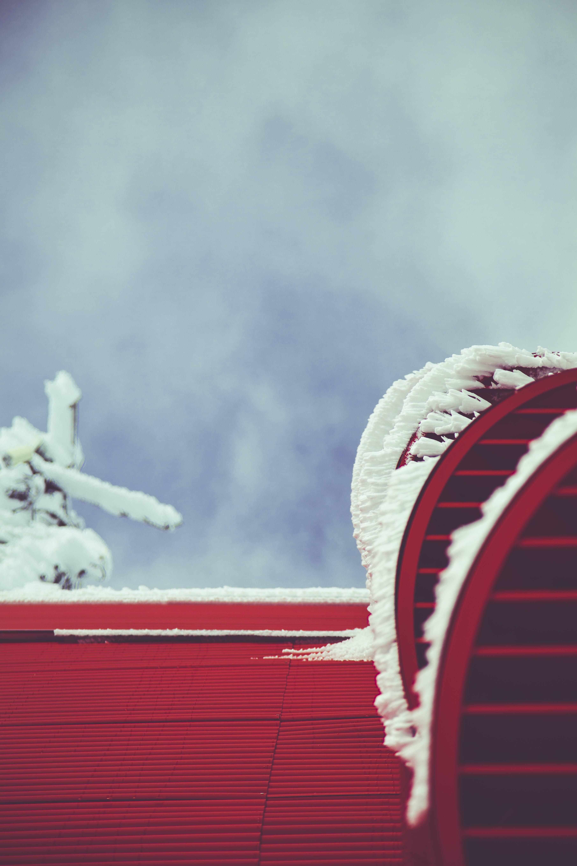 감기, 겨울, 경치