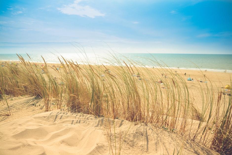 beach, dune, holiday