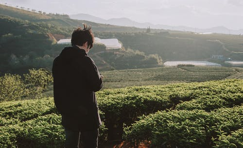 Gratis stockfoto met akkerland, berg, boerderij, bomen