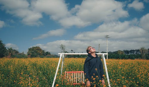 Man Standing on Bed of Yellow Flowers Near Bench Swing