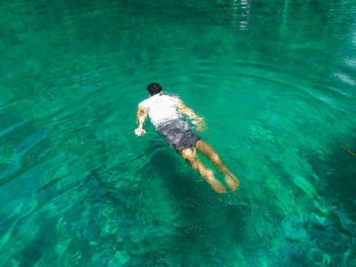 Fotobanka sbezplatnými fotkami na tému čistá voda, more, plávanie, plávať