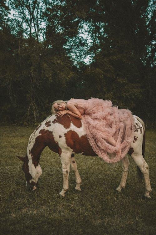 Immagine gratuita di adulto, agricoltura, animale