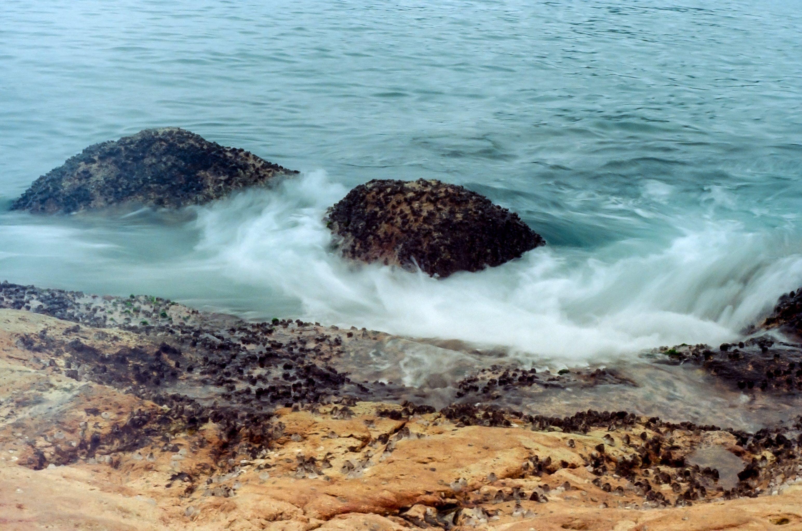 Free stock photo of blue, coast, emotional, free