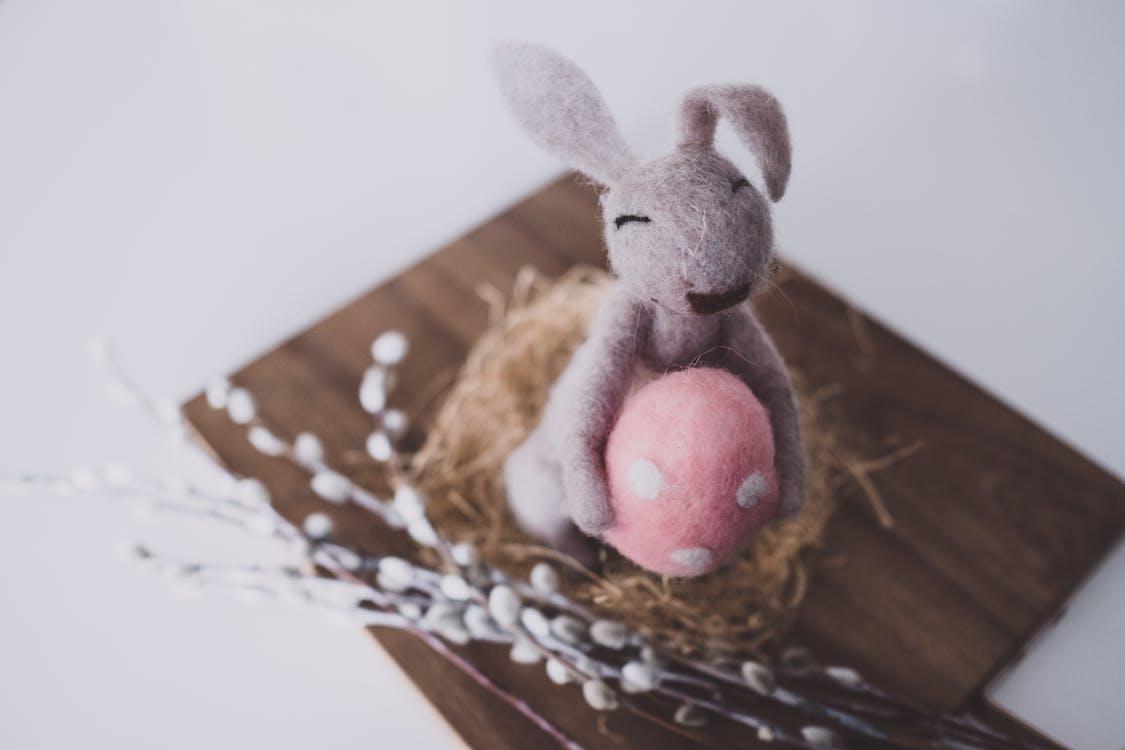 Безкоштовне стокове фото на тему «Великдень, великдень прикраси, великоднє яйце»