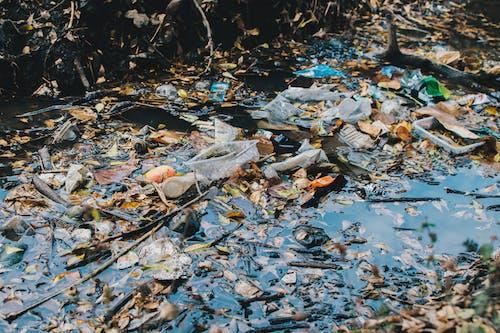 Ilmainen kuvapankkikuva tunnisteilla ilmastonmuutos, maailmanlaajuinen viritys, muovi, muovin saastuminen