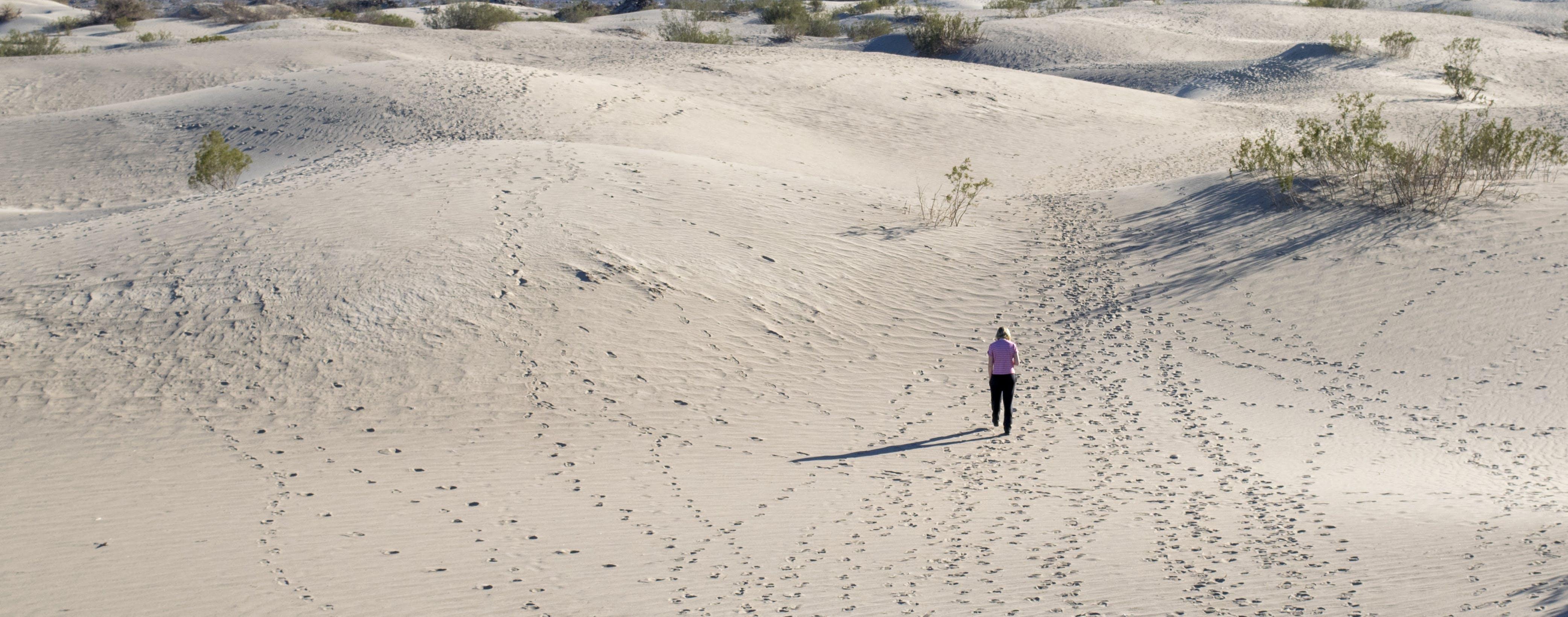 Free stock photo of alone, barren, desert, dry